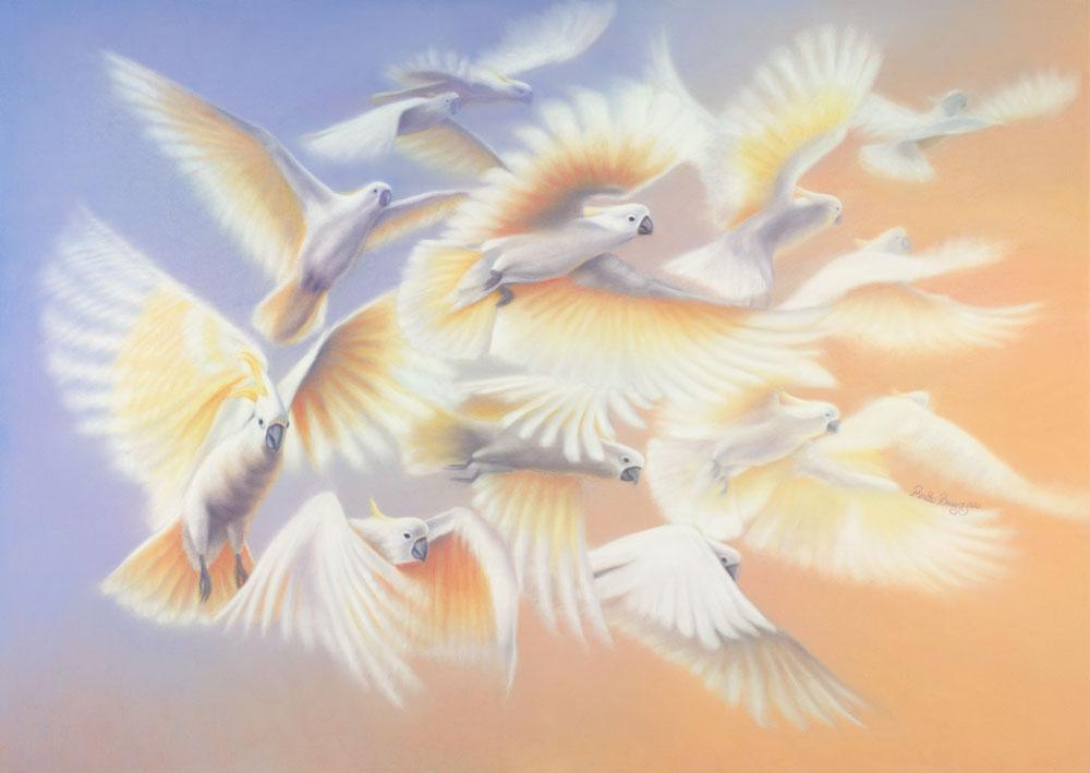 Breaking Free (Sulphur-crested Cockatoos)  Dimensions: 107 x 76cm Medium: Pastel