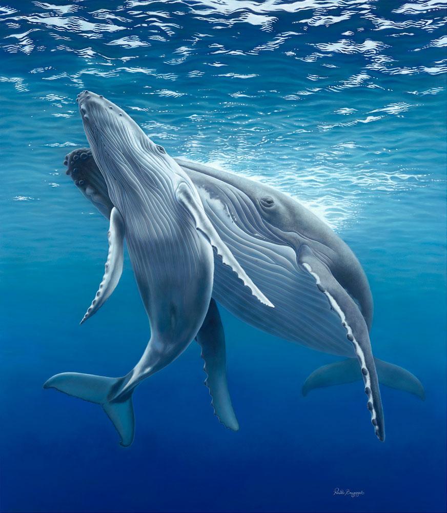 KANYINI (Aboriginal word for nurture)  Subject: Humpback Whale Mum & Calf Dimensions: 138 x 120cm  Medium: Pastel