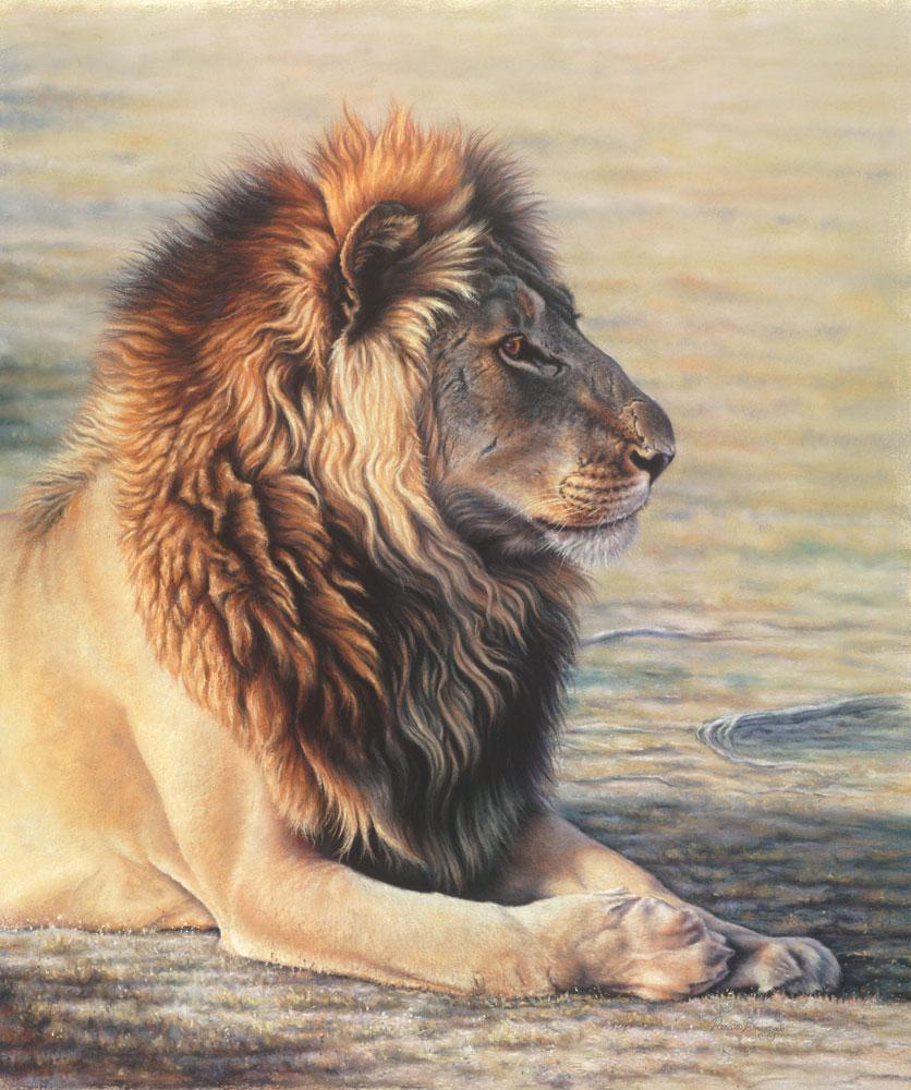 Lion  Dimensions: 63 x 76cm  Medium: Pastel