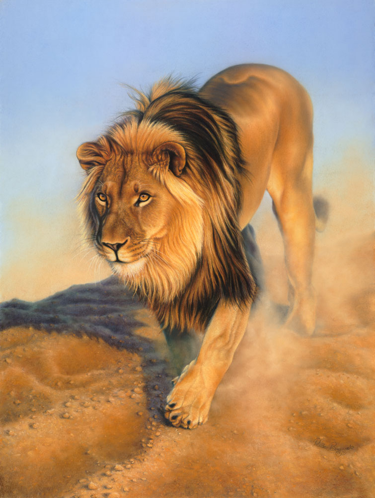 Namibian Lion  Dimensions: 80 x 107cm  Medium: pastel