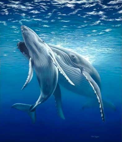 humpback wildlife art