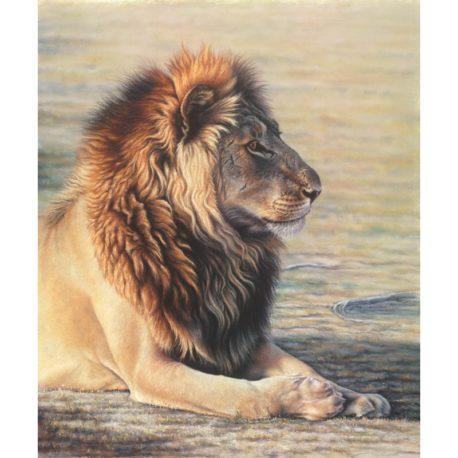 Lion-print