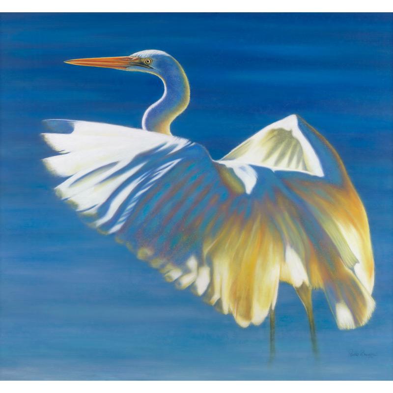 Great Egret  Dimensions: 85 x 80cm Medium: Pastel